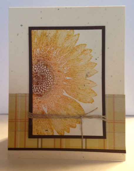 Iguanastamp! Card made with sunflower background stamp and Sweater Weather designer paper from Stampin' Up!