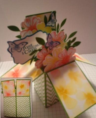 Iguanastamo! Card in a box