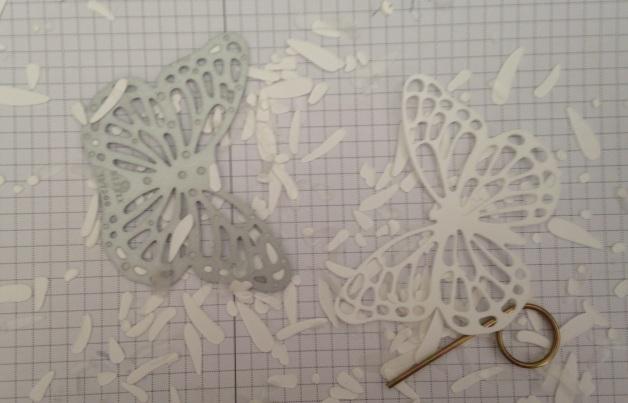 ButterfliesChads